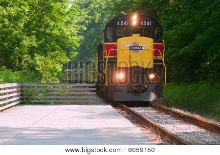 Tren de pasajeros escénica