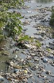 stock photo of groundwater  - Garbage in water sacred hinduism Bagmati river Kathmandu Nepal - JPG