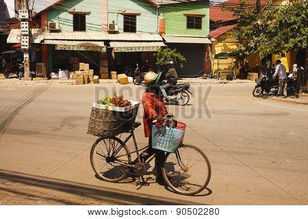 Fruits Bike Seller