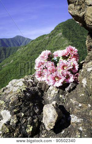 Flowers bouquet. Color image