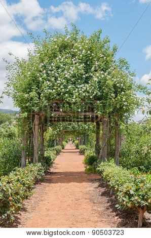 Formal Garden On A Farm