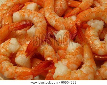 Coocked shrimps