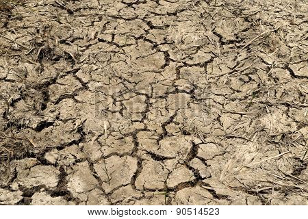 Dry Cracked Soil No Rain.