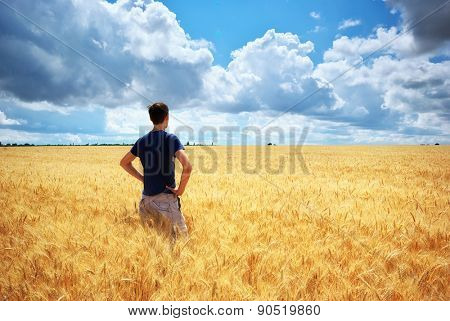 Man in yellow wheat meadow. Conceptual design. Agricultural scene.
