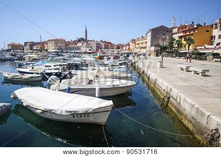 Marina And Promenade In Rovinj