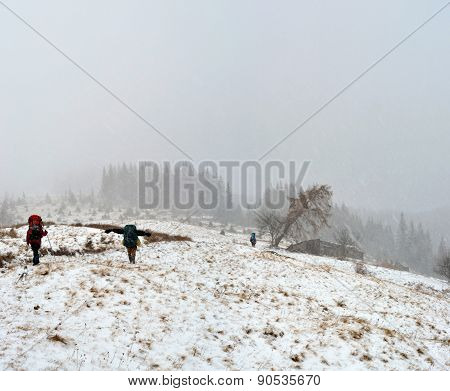 Hiking In The Snowstorm In Carpathian
