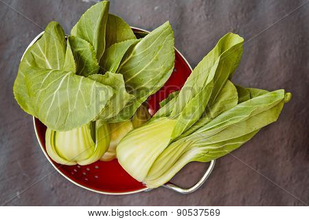 Three Pok Choi Cabbage In Red Colander On Gray Background, Top View