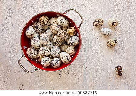 Quail Eggs In Red Collander On Light Wooden Background, Top View