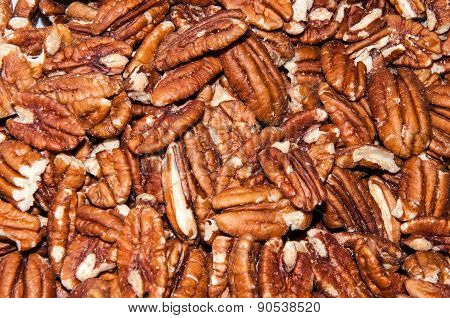 Pecan Nut Or Carya Illinoinensis