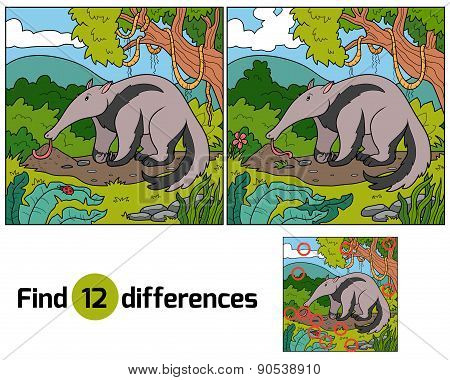 Find Differences (anteater)