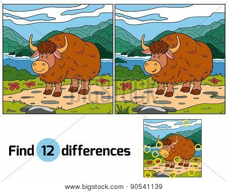 Find Differences (yak)