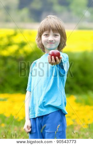 Boy Holding Red Apple In The Garden
