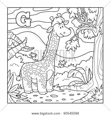 Coloring Book (giraffe), Colorless Alphabet For Children: Letter G