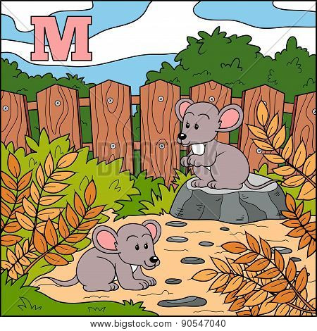 Color Alphabet For Children: Letter M (mouse)