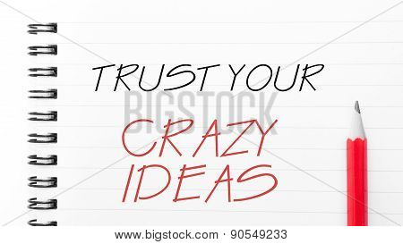 Trust Your Crazy Ideas  Written On Notebook Page