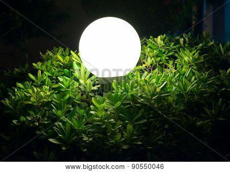 Street lamp in bush