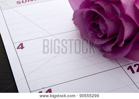 Office Calendar Planner