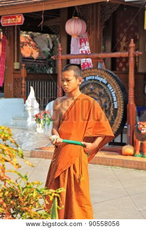 CHIANG MAI, THAILAND - APRIL 14, 2011:  Young Buddhist monk from a hose watering the flowers