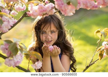 Small Girl Smelling Cherry Blossom