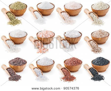 collection of different types of salt isolated on white