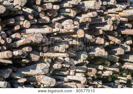 Wooden Log Storage Place