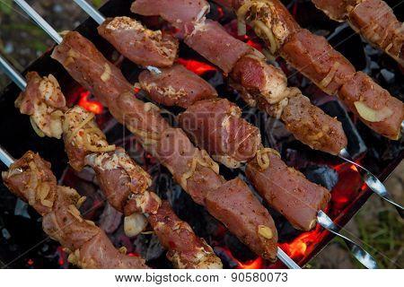Shish Kebab (shashlik)