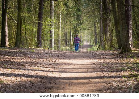 Green Forest And Mother With Stroller