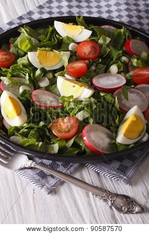Salad With Eggs, Radishes And Sorrel Closeup. Vertical