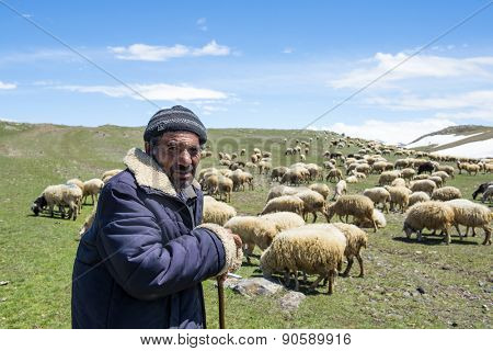 Akhalkalaki, Georgia - May 07, 2015: Shepherd and flock of sheep in mountain pastures
