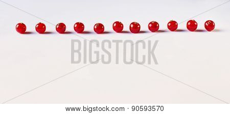 Red Currant On The White Background