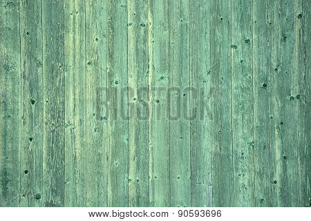 Green Wood. Picture Can Be Used As A Background