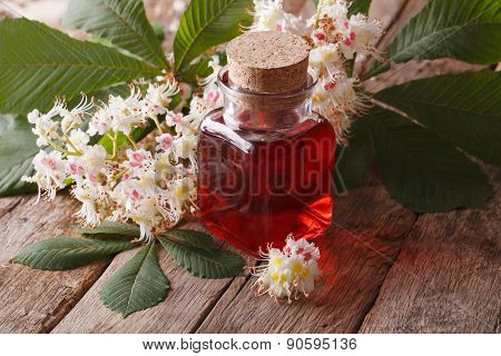 The Extract Of The Flowers Of Chestnut. Closeup Horizontal