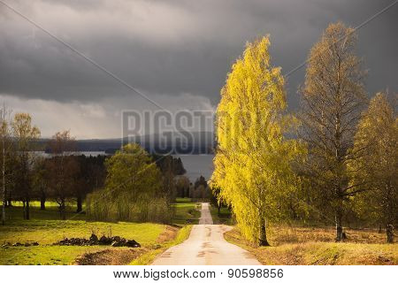 Dalecarlia Landscape