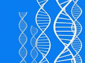 stock photo of biotechnology  - Science and biotechnology theme of white double helix DNA sprials over a blue background - JPG