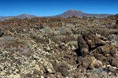 image of volcanic  - wild volcanic landscape at Malpais de la Corona Lanzarote Island Canary Islands Spain - JPG