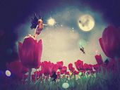 foto of night-blooming  - Dream fairy in fantasy land with bright red tulips at night time - JPG