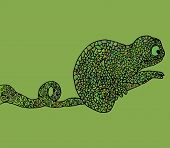 stock photo of chameleon  - Abstract chameleon vector illustration african amphibian animal - JPG