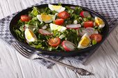 pic of sorrel  - Spring salad with eggs tomatoes radishes and sorrel close up on a plate - JPG