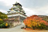 picture of castle  - Osaka Castle Is The Vintage Castle In Osaka - JPG