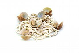 pic of substitutes  - Baby eels - JPG