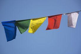 foto of tibetan  - Tibetan Prayer Flags in Bir - JPG
