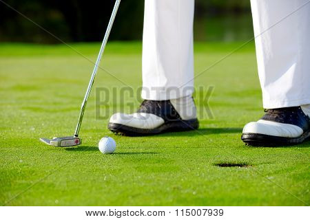 Golfer Putting On Green, Detail
