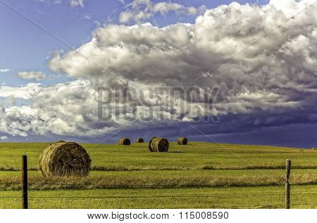 Hay Bales on Meadow in Storm