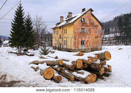 Firewood Covered In Snow