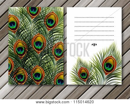 Beautiful vector peacock feathers cards or backgrounds with space for text. EPS10