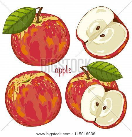 Apple isolated, Vector.