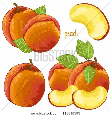 Peach Isolated, Vector.