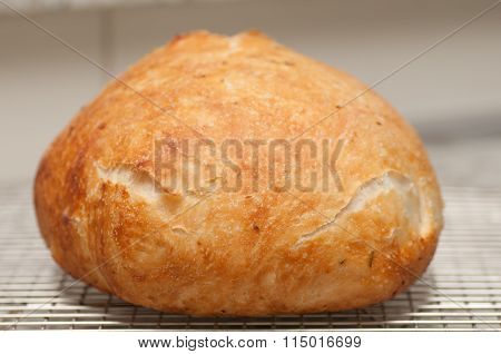 Handmade Bread With Rosemary