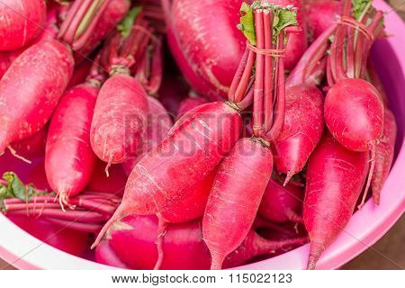 Fresh Beetroot In A Pink Plastic Basin