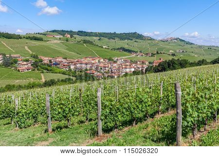 Green vineyards and small town on background under blue sky in Piedmont, Northern Italy.